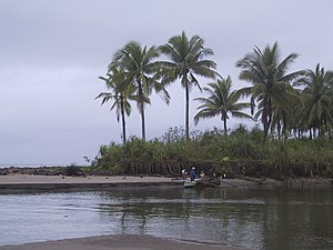 Mayorga, Leyte - Image: Mayorga unknown riverside and beach panoramio