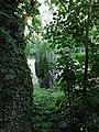 Menhir de la Roche Gorron 09.jpg