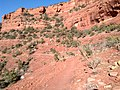Mescal Trail, Sedona, Arizona - panoramio (9).jpg