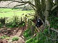 Mid Devon , Cow and Gate - geograph.org.uk - 1257205.jpg