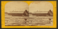 Mill dam and sash factory, Peshtigo, Wis, by Carbutt, John, 1832-1905.png