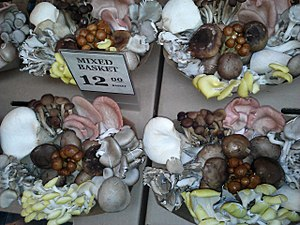 Edible mushroom - Baskets of mixed culinary mushrooms at the San Francisco Ferry Building