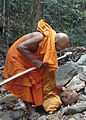 Monk and the walking stick-2.jpg