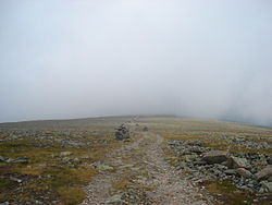 Summit Of Mont Jacques Cartier