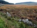 Moorland at the summit of the Kendoon to Moniaive road - geograph.org.uk - 377543.jpg