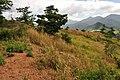 Morong, 2108 Bataan, Philippines - panoramio (27).jpg