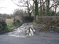 Muddy access track - geograph.org.uk - 1727147.jpg
