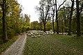 Mueegartenschafe17102015c75.jpg
