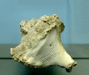 "Murex shell bearing the name ""Rimush, king of Kish"""