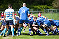 NATO Lions Rugby (7160384688).jpg