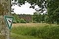 NSG Niederrodener Lache04.jpg