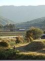 Nakatocho, Toyota, Aichi Prefecture 441-2514, Japan - panoramio (2).jpg