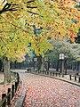 Nara Park, November 2016.jpg