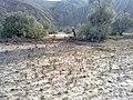 Navidhand new 449 - panoramio.jpg
