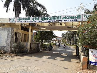 Navsari Agricultural University - University entrance gate