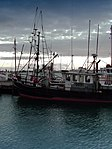 New Zealand Fishing Boat-3373.jpg