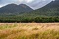 New Zealand NZ7 2884.jpg