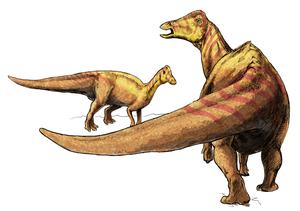Nipponosaurus is a lambeosaurine hadrosaurid f...