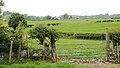 Nr. Llanddaniel Fab, Holy Island (507309) (33044180561).jpg