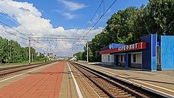 Nsk-Ob Aeroflot platform 07-2016.jpg