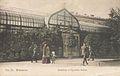 Oranżeria w Ogrodzie Saskim 1908.jpg