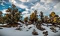 Oregon Badlands Wilderness (32674826325).jpg