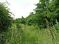 Owlcotes Lane - Ring Road - geograph.org.uk - 1362883.jpg