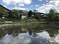 Paddy fields near Shimbashi Bridge 3.jpg