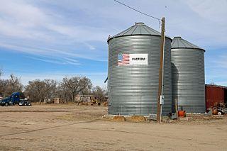 Padroni, Colorado Census-designated place in Colorado, United States