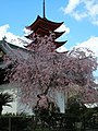 Pagoda in Miyajima - panoramio.jpg