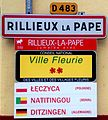 Panneau d'entrée dans Rillieux-la-Pape.JPG
