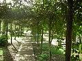 Paramaribo park (2345492923).jpg