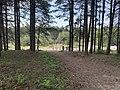 Parc Marquenterre - Saint-Quentin-en-Tourmont (FR80) - 2021-05-29 - 4.jpg