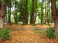 Park Dranske-Lancken - Mittelachse 3.jpg