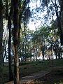 Parque de los Poetas en Mérida 05.jpg