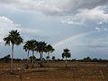 Parque nacional Aguaro-Guariquito 019.jpg