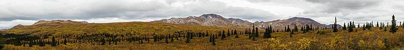 Parque nacional y reserva Denali, Alaska, Estados Unidos, 2017-08-29, DD 63-73 PAN.jpg