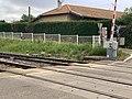 Passage niveau 4 ligne Mâcon - Ambérieu St Jean Veyle 13.jpg