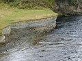 Past river deposits in the bank of the River Rheidol. - geograph.org.uk - 51841.jpg