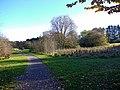 Path, Ponteland Park.jpg
