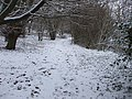 Path alongside Wenallt Road, Cardiff - geograph.org.uk - 1149364.jpg