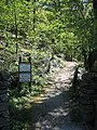 Path through Castlebergh Plantation, Settle - geograph.org.uk - 438100.jpg