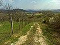 Penc, Hungary - panoramio.jpg