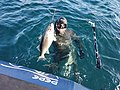 Pepe Viña pescando lubina.jpg