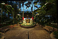 Phipps Conservatory winter 2015 Palm Court.jpg
