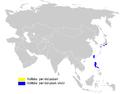 Phylloscopus ijimae distribution map.png