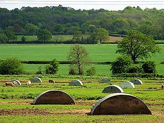 Bucklebury - New Barn Farm, Pig Farm