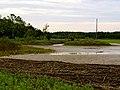 Pinckney Island National Wildlife Refuge (5957931793).jpg