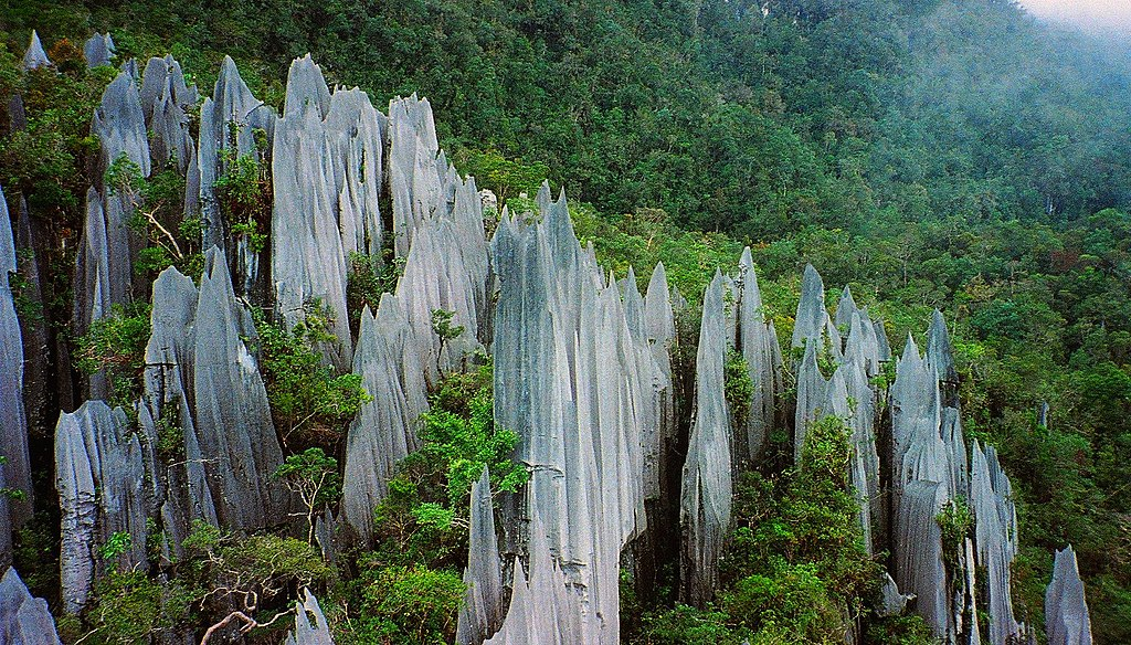 Limestone pinnacles jutting out of a mountainside forest on Mount Api