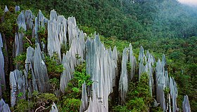Pinnacles at Mulu 2.jpg